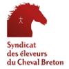 LA JUMENTERIE DE CORNOUAILLE CHEVAL-BRETON-LOGO-100x100 Accueil